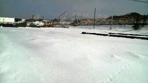 20090204hi-land.jpg